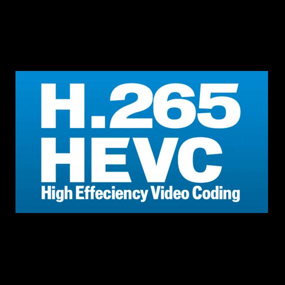 H30Evolution Option HEVC Display Televes 593252